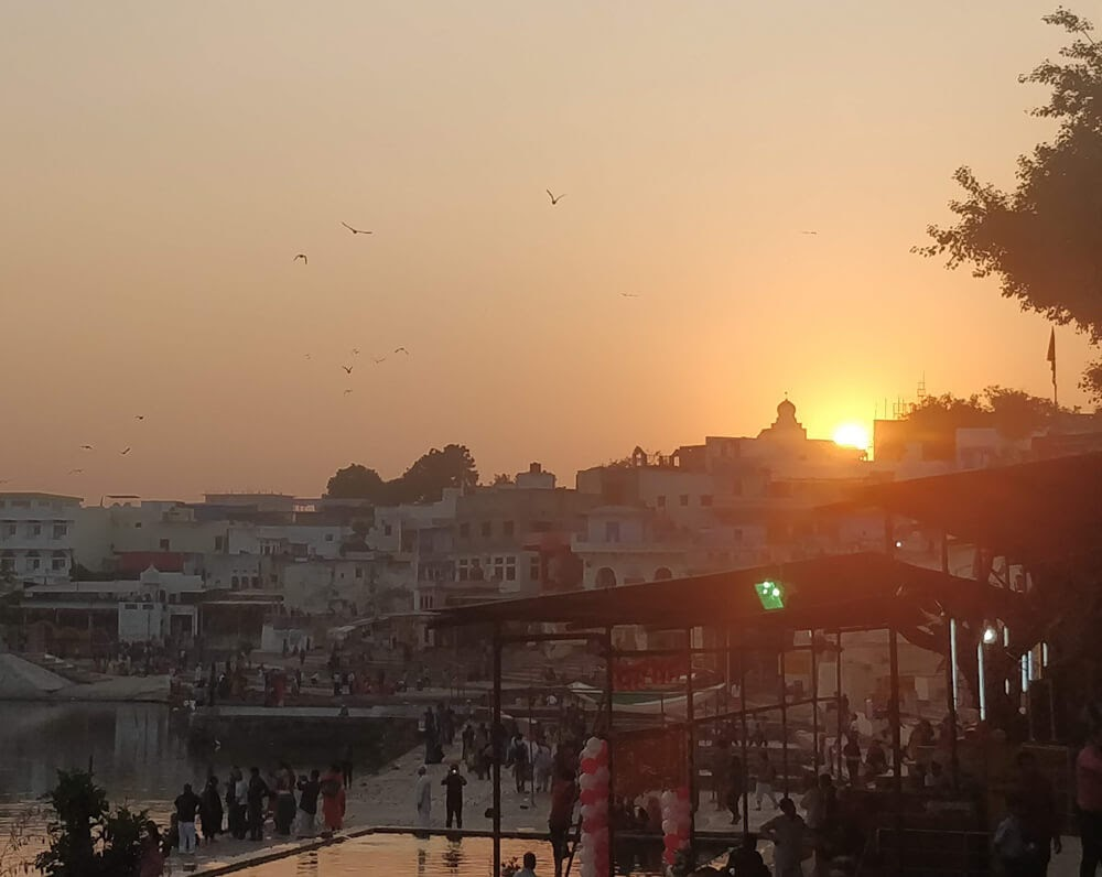 pushkar+fair+rajasthan