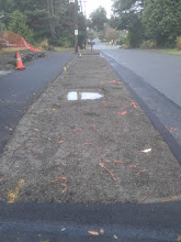 Photo: This is a close-up of the planting strip at the east end of the sidewalk.  The puddle is one of two locations for trees.
