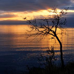 Sunset by Dalibor Jud - Landscapes Sunsets & Sunrises ( adriatic, more, kostrena, sunset, jadransko, croatia, zalazak, sea, sunca, hrvatska )