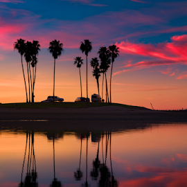 Reflected Palms by Lance Emerson - Landscapes Sunsets & Sunrises ( pastel, san diego, reflection, california, sunset, mission bay, palms )