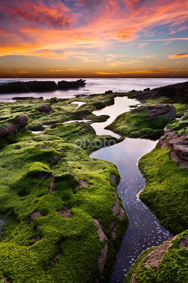 Curves&colors by Jorge Maia - Landscapes Sunsets & Sunrises