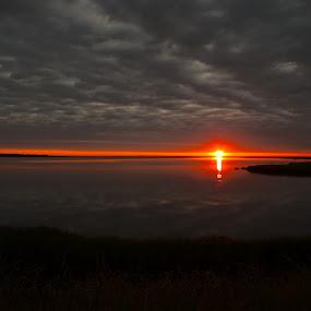 Sunrise Delaware Bay by Brian Lord - Landscapes Sunsets & Sunrises ( bay, sunset, beautiful, marsh, sunrise, landscape )