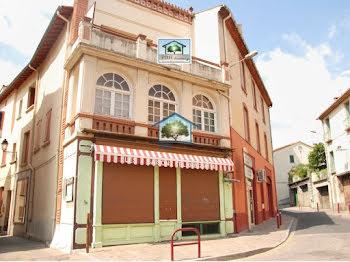 locaux professionels à Arles-sur-Tech (66)