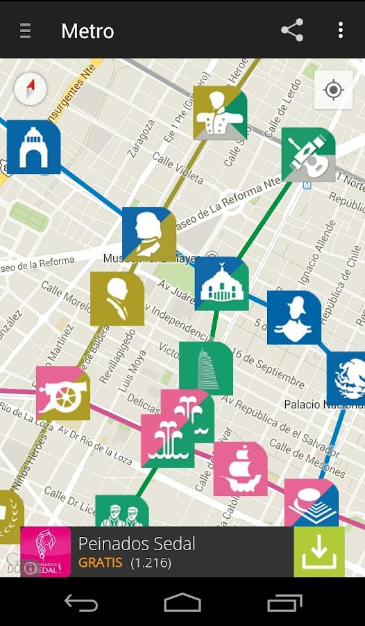 Red Transporte DF - screenshot