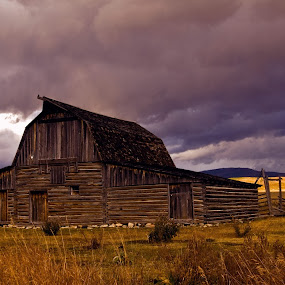 Stormy Sunset at Moulton Barn by Brian Kerls - Buildings & Architecture Decaying & Abandoned ( stormy, gtnp, mountain, wyoming, travel, yellow, mormon row, old west, landscape, storm, grand tetons, rustic, usa, weathered, light;, farm, mountains, sky, barn, dramatic, evening, clouds, purple, grass, agriculture, tourism, scenic, dusk, farming, moulton barn, rural, destination, country, landmark, fence, national park, sunset, outdoors, barns, western, landscapes, tetons, outside )