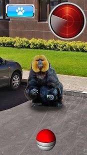 Pocket Apes GO - náhled