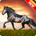 Amazing Horse Wallpaper icon