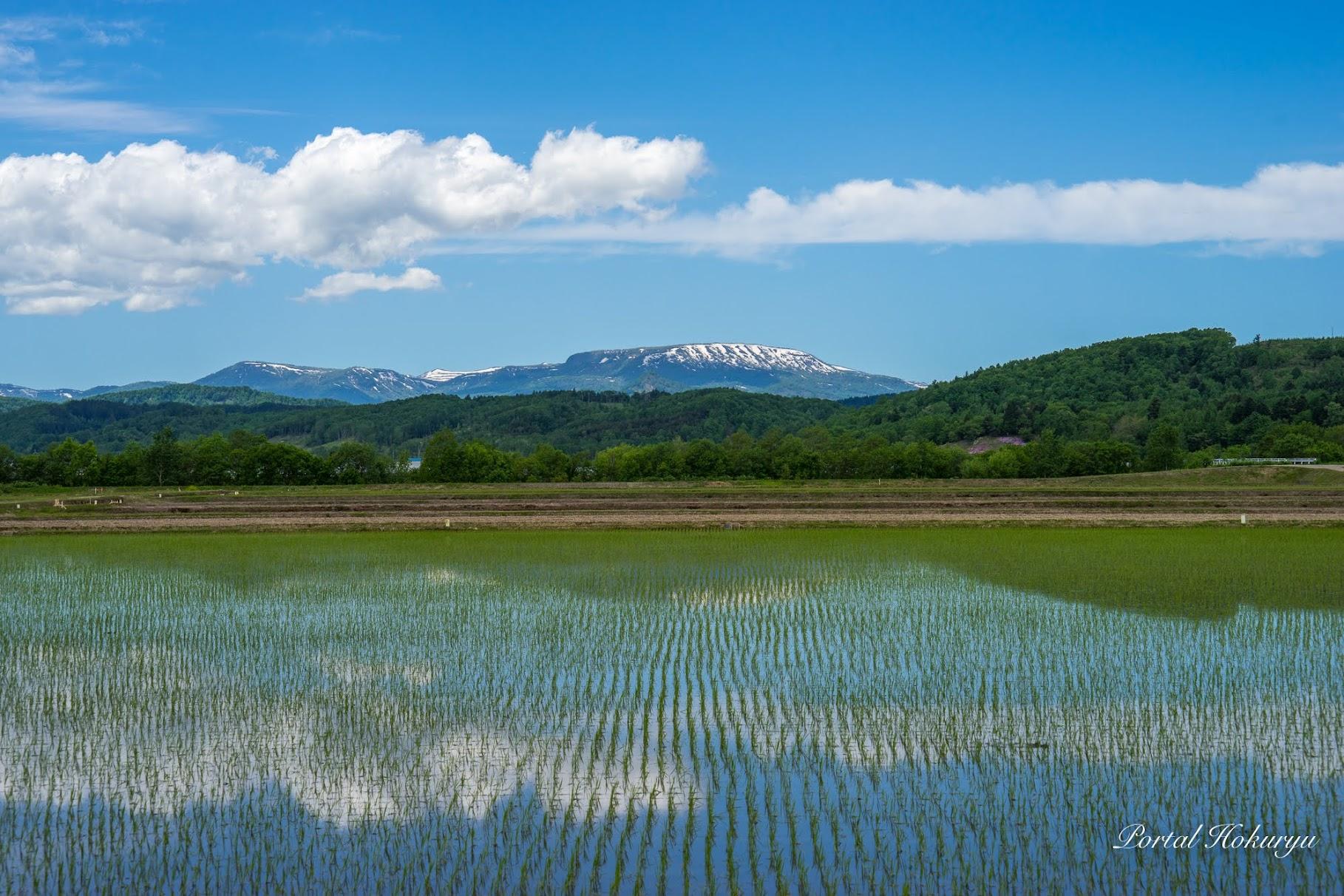 青く輝く恵岱岳
