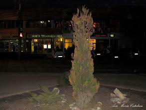 Photo: 2012.03.17