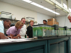 Photo: Later the same week - Series of presentations to the NOAA Science Advisory Board (SAB) members. Demo included feeding some of the specimens--
