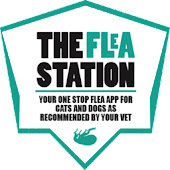 The Flea Station