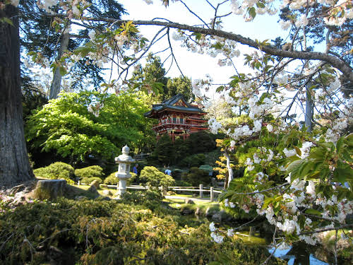 What to Do in Northern California: Attractions & Travel Guide // Japanese Tea Gardens, San Francisco