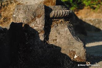 Photo: Ruins on Rajgad