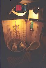 Photo: exhibit in basement toilet