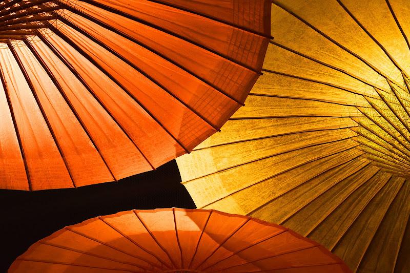 Ombrelli di BASTET-Clara