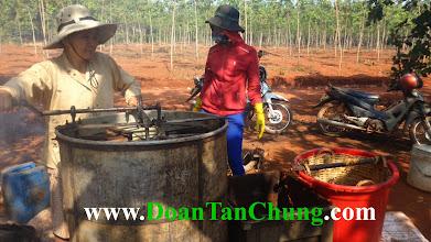 Photo: Nếu bạn có thắc mắc gì về sản phẩm mật ong phấn hoa sữa ong chúa hãy liên hệ với chúng tôi qua những trang web :  www.DoanTanChung.Com www.traiongmatphatxim.com www.matongnguyenchatgiare.com  Hoặc bạn có thể liên hệ trực tiếp SĐT 01218.96.26.86 (Mr Chung) Chúng tôi luôn sẵn sàng phục vụ bạn