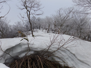 積雪は1m弱