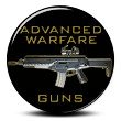Advanced Warfare Guns