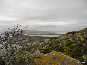 Photo: Vista sull'Asinara