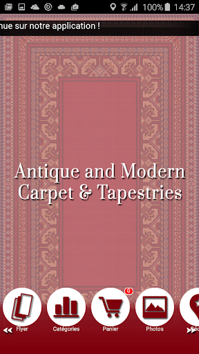Antique Carpet and Tapestries