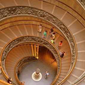 The Stairs by Rita Uriel - Buildings & Architecture Other Interior ( stairs, rome, round, spiral, vatican,  )