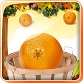 Orange Catcher