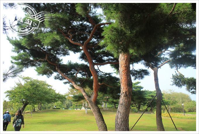 韓國一山湖水公園