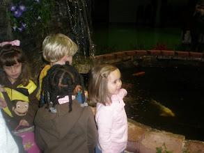 Photo: Kaleya and Jackson look at the fish pond
