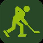 IceHockey 24 - hockey scores 2.29.1