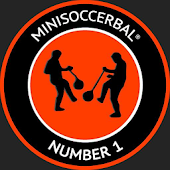 Minisoccerbal