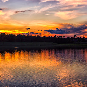 The All Color Sunset by Thomas Vasas - Landscapes Sunsets & Sunrises ( sunsets, parks, reflections, travel, landscapes,  )