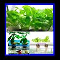 DIY Organic Gardening Ideas icon