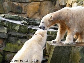 Photo: Eine Runde Schmusen :-)