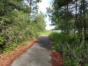 県道(右)沿いに奥へ