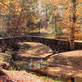 The Stone Bridge by Thomas Vasas - Landscapes Travel ( nature, scenics, travel, landscapes,  )
