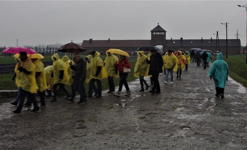 Per non dimenticare: campo di concentramento di Birkenau.... di LASER19