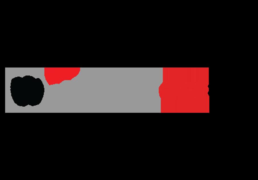 Aumatics - Watchguard Partner