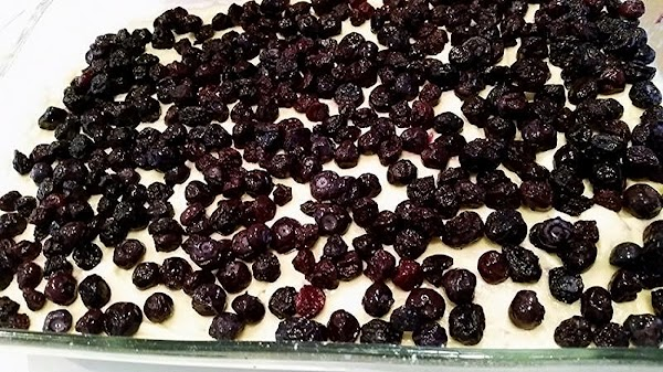 Spread batter into prepared pan. Sprinkle the top evenly with the blueberries.