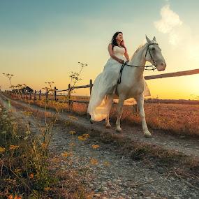 Bride & Horse by Bojan Dzodan - Wedding Bride ( love, nature, sunset, wedding, horse, beauty, bride )