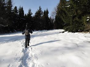Photo: 23.Okolice głównego wierzchołka Śnieżnicy.
