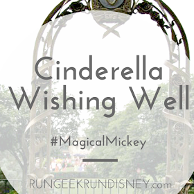 Make a wish with wishing well