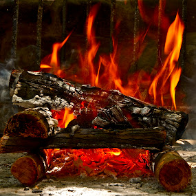 Scout's Fire by Martha van der Westhuizen - Artistic Objects Other Objects ( ashes, pwcfire, red flames, burning wood, fire )