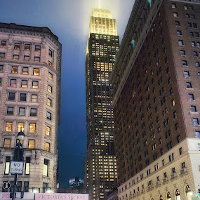 Empire State Building   by Aurelio Firmo - Buildings & Architecture Public & Historical ( new york )