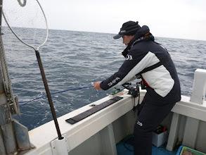 Photo: 今度は!? 「・・・切られたー!」 「サメに食べられないように全速で勝負したんですが・・・」今回は、メダイでした。