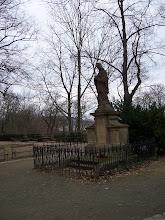 Photo: Svatí vyhlížejí v březnovém holém parku trochu nostalgicky.