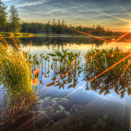 Sunset on the pond by John Vreeland - Digital Art Places ( hdr, maine, waterscape, sunset, pond, sun rays, sun )
