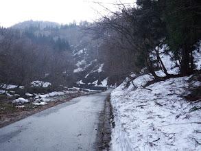 除雪された林道を進む