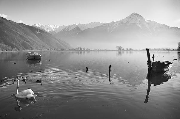 Al lago di Simona Rizzi