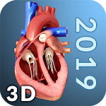 Heart Anatomy Pro. 1.6