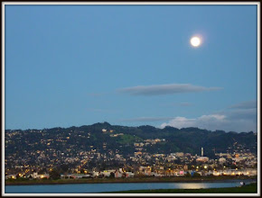 Photo: Berkeley under the moon